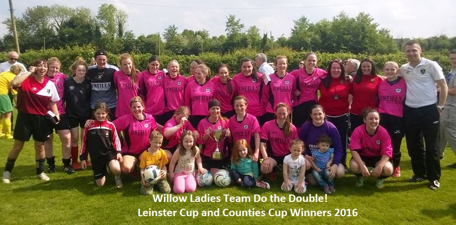 Ladies Leinster cup